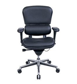 Ergohuman Lo Back-Leather Le10Erglo Chair